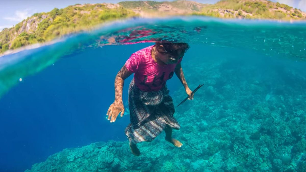 Real Mermaids Found in Timor-Leste